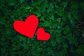 Coeurs de papier rouge dans le trèfle vert — Photo