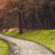 Winding road curves through autumn trees. — Stock Photo