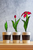 Flower Growth stages sketch — Stock Photo