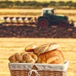Bread in wicker basket with tractor and agricultural field in ba — Stock Photo