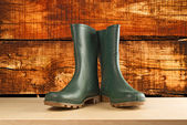 Green rubber boots for garden work — Stock Photo