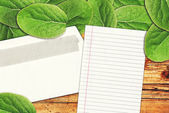 Blank letter paper and envelope — Stock Photo