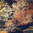 Corroded metal texture. — Stock Photo #45967055