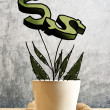 Growing dollars in flower pot, conceptual image — Stock Photo #46169503