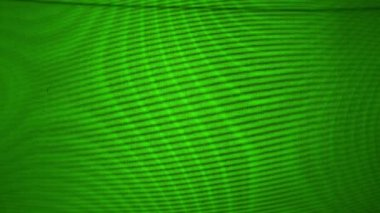 Computer monitor green screen failure. 1920x1080, 1080p, hd footage. — Stock Video