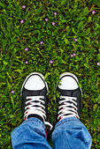 Standing in fresh spring grass — Stock Photo