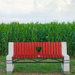 Wooden bench in corn field — Stock Photo #49324077