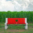 Wooden bench in corn field — Stock Photo