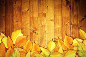 Autumn leaves on wooden background — Stock Photo