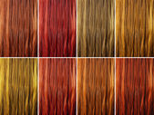 Long female hair as color samples — Stock Photo