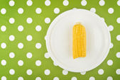 Cooked Corn maize cob half on a plate — Stock Photo