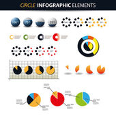 Colorful Set of Infographic Elements - Charts, Pie Diagram Templates — Stock Vector