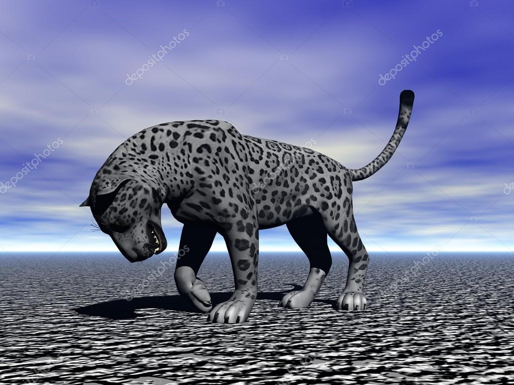 Panther black  Stock Photo #14747733