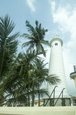 Lighthouse and palm trees — Stock Photo