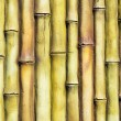 Bamboo wall decoration — Stock Photo