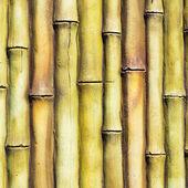 Bamboo wall decoration — Stock Photo