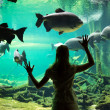 Woman at the oceanarium — Stock Photo