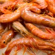 Shrimps on ice — Stock Photo
