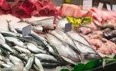 Surtido de pescados — Foto de Stock