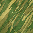 Camouflage pattern — Stock Photo #30003093