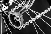 Tensioner gear of a bicycle — Stock Photo