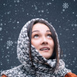 Snowfall — Stock Photo