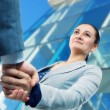 Businesswoman and client handshaking — Foto Stock
