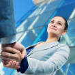 Businesswoman and client handshaking — Stok fotoğraf