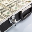 Case full of dollar on white background — Stock Photo