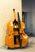 Big cello like cupboard for wine — Stock Photo