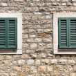 Old wooden windows — Stock Photo #50796213