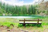 Bench at  Lake — Stok fotoğraf