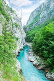 Tara river canyon — Stock Photo