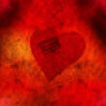 Fragile heart — Stock Photo #2317923