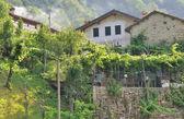 Italian mountain village — Stock Photo