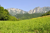 Mountain landscape in summer (Italia) — Stock Photo