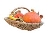 Basket with pumpkins — Stock Photo