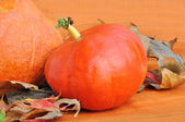 Pumpkins on dried leaves — Stock Photo
