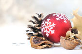 Natural decoration for christmas — Stock Photo