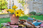 Gardenning in fall — Stock Photo