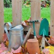 Stock Photo: Gardening tools in fall garden
