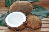 Coconuts — Foto Stock