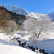 Landscape of the Massif Central (France) — Stock Photo