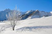 Mountain landscape in winter in a ski resort — Stock Photo