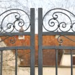 Wrought iron gate — Stock Photo #22959536
