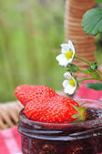 Delecious strawberries for jam — Stock Photo
