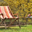 Deckchair in the garden - Stock Photo
