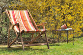 Deckchair in the garden — Stock Photo