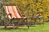 Deckchair in the garden — Stock Photo