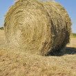 Stock Photo: Staw bale